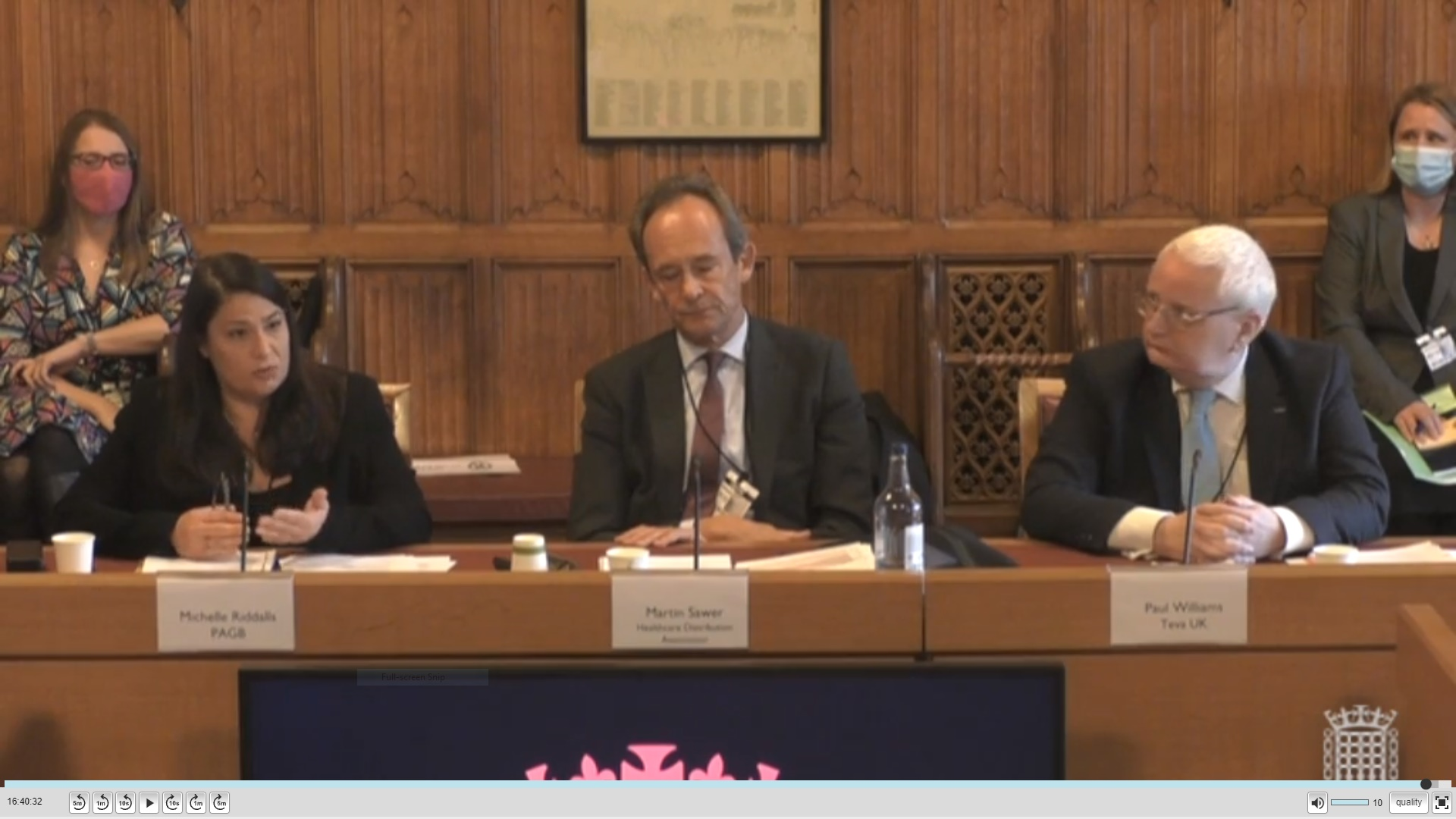 PAGB CEO Michelle Riddalls gives evidence to House of Lords committee